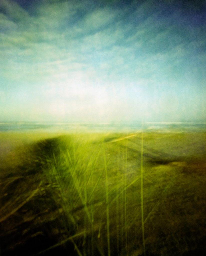 la spiaggia vista attraverso fili d'erba, sullo sfondo il mare, cielo con nuvole