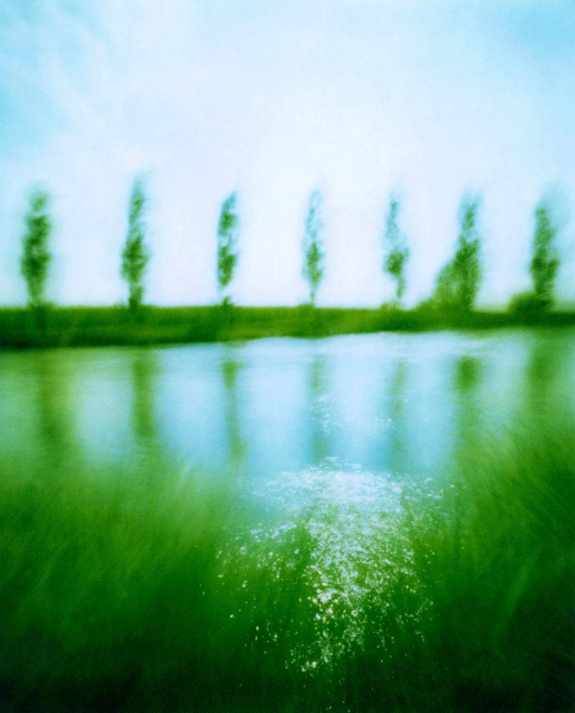 un filare di pioppi che si riflette nel fiume, erba sull'altra riva; scansione da Polaroid