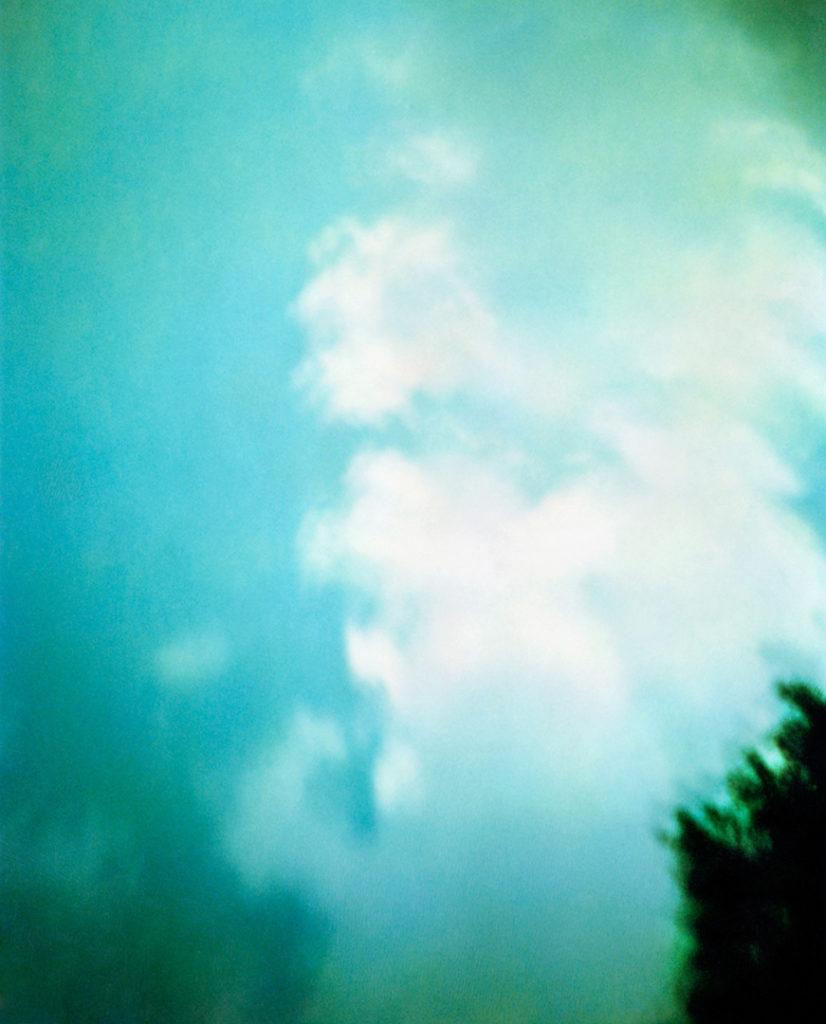 cielo azzurro con poche nuvole bianche, in basso a destra la chioma di un albero