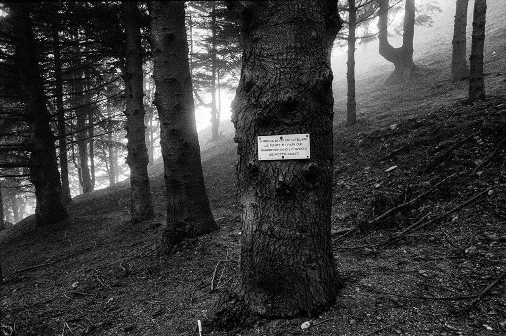 Ci resta il nome_Passo del Turchino, sul luogo dei caduti